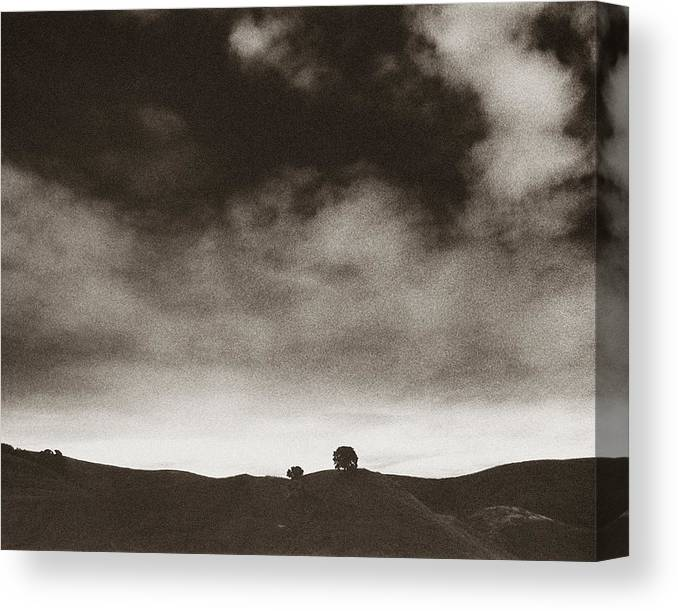 Northern California Canvas Print featuring the photograph Tree Hill by Ari Jacobs