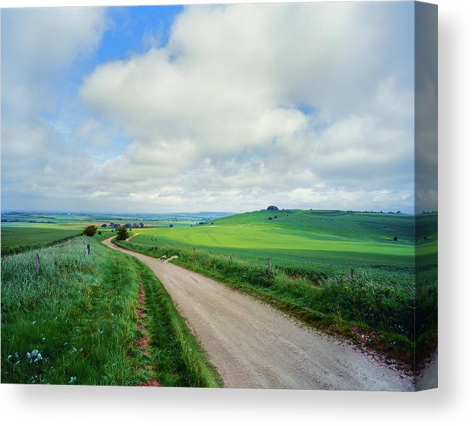 Photography Canvas Print featuring the photograph View Of Road Passing Through A Field by Panoramic Images