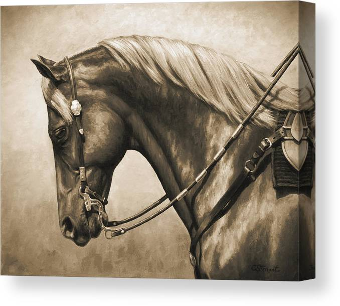 Horse Canvas Print featuring the painting Western Horse Painting In Sepia by Crista Forest