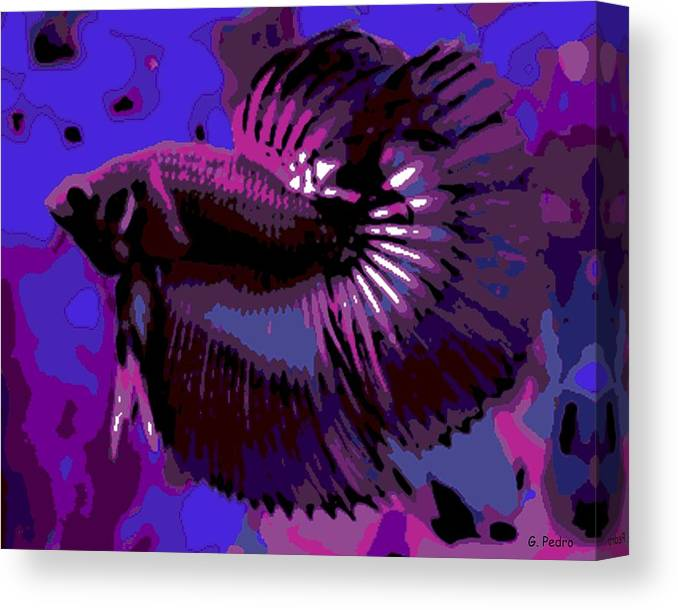 Betta Canvas Print featuring the photograph Fabulous Fins by George Pedro