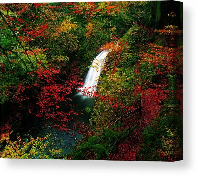 Autumn Canvas Print featuring the photograph Glenoe Waterfall And Glen, Co Antrim by The Irish Image Collection