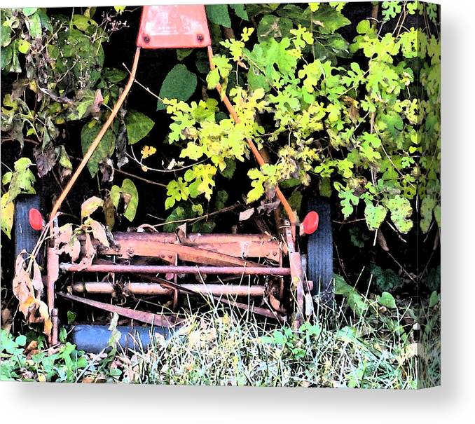 Nature Canvas Print featuring the photograph Push Mower by Gary Everson