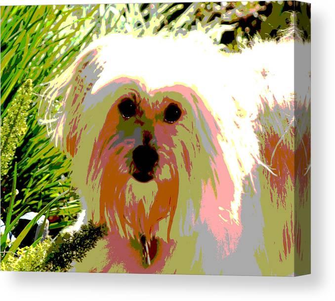 Portrait Canvas Print featuring the photograph Bonnie In Color by Ellen Lerner ODonnell