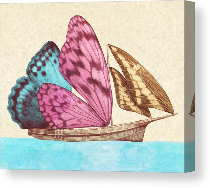 Butterfly Canvas Print featuring the drawing Butterfly Ship by Eric Fan