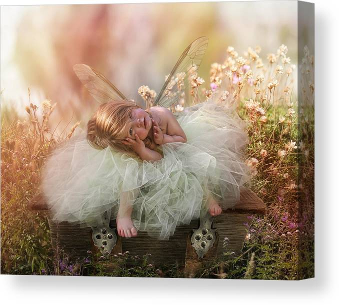Elf Canvas Print featuring the photograph Elf Baby by Cindy Grundsten