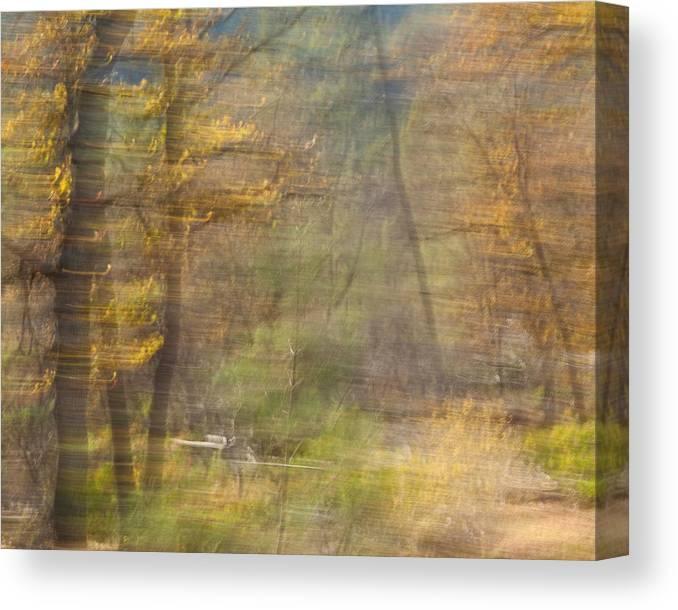Autumn Canvas Print featuring the photograph Fleeting Autumn by Denise Dethlefsen