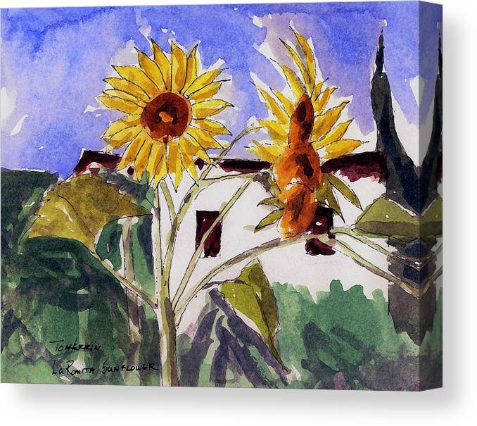 Watercolors Canvas Print featuring the painting La Romita Sunflowers by Tom Herrin