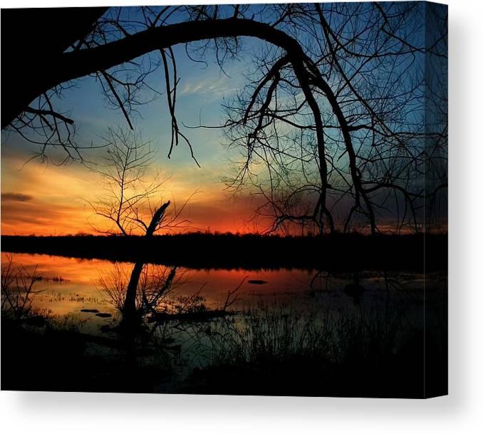 Landscape Canvas Print featuring the photograph Luminous Essence by Mitch Cat
