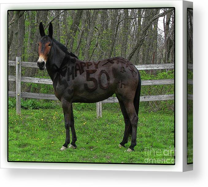 Canvas Print featuring the photograph Nifty Fifty Profile by Deborah Johnson