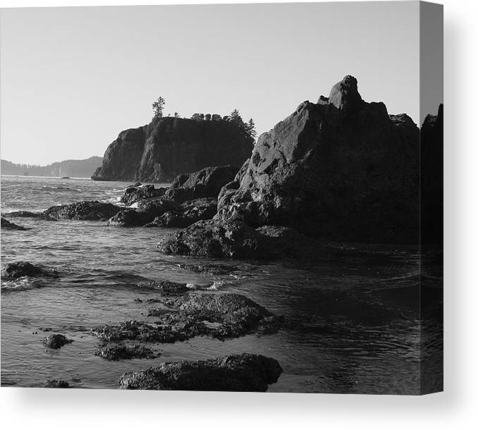 Sand Cliffs Canvas Print featuring the photograph Olympic Peninsula by Sonja Anderson
