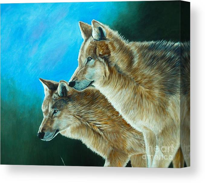 Coyotes Canvas Print featuring the painting Out Of The Shadows by KS Ballew