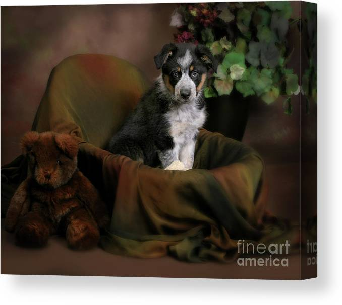 Animal Canvas Print featuring the photograph Puppy Portrait by Crystal Garner