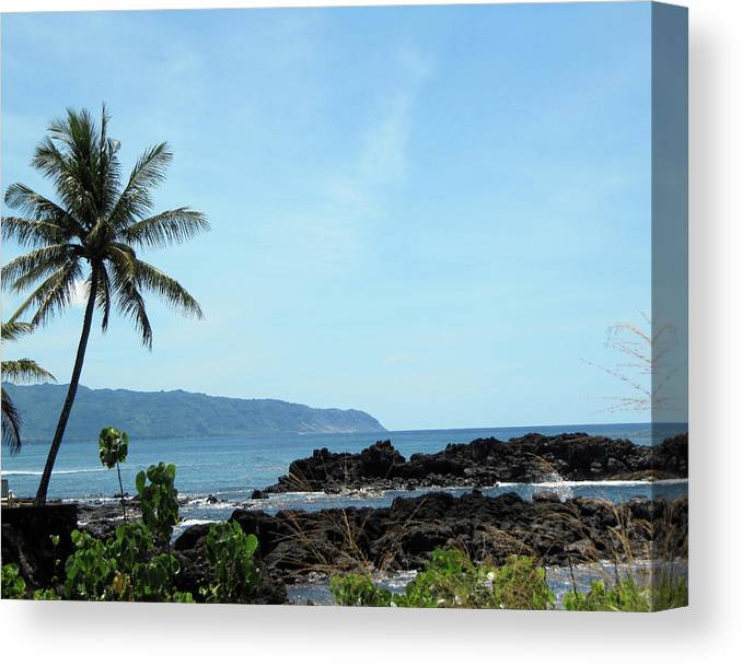 Hawaii Canvas Print featuring the photograph Shark's Cove by Shannon Pearson