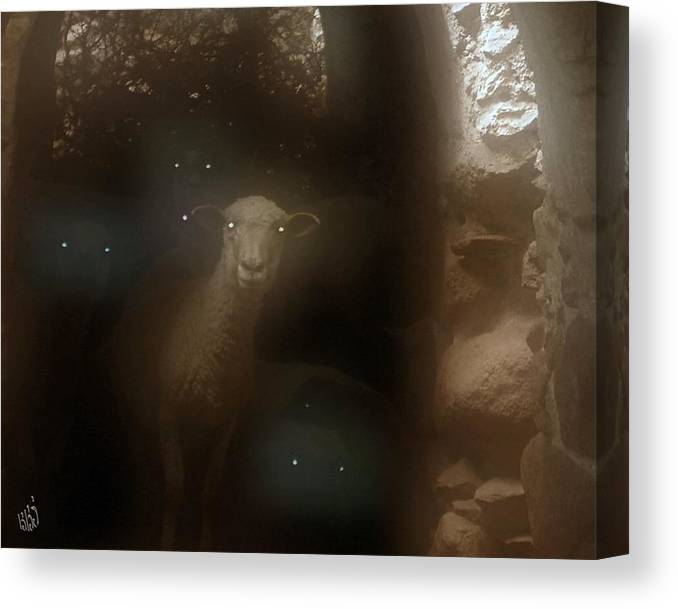 Sheep Canvas Print featuring the photograph Spectral Sentinels by Kathy Simandl