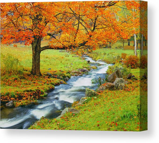 Scenics Canvas Print featuring the photograph Autumn In Vermont G by Ron thomas