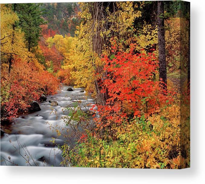 Idaho Scenics Canvas Print featuring the photograph Autumn Rapids by Leland D Howard