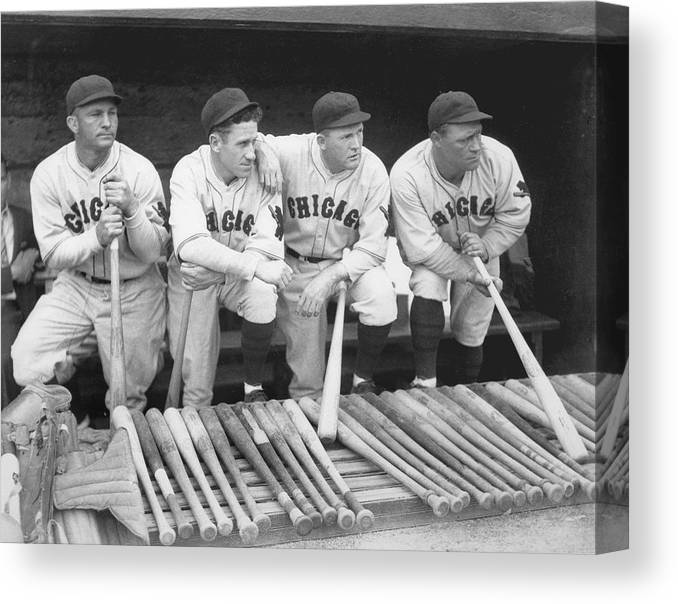 People Canvas Print featuring the photograph Members Of The Chicago Cubs by Chicago History Museum