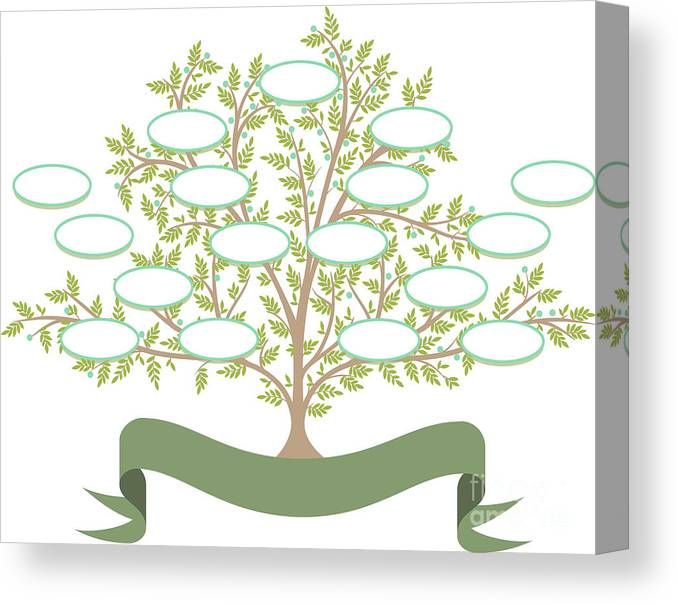 Parent Canvas Print featuring the digital art Vector Family Tree With Blank Spaces To by Tomacco