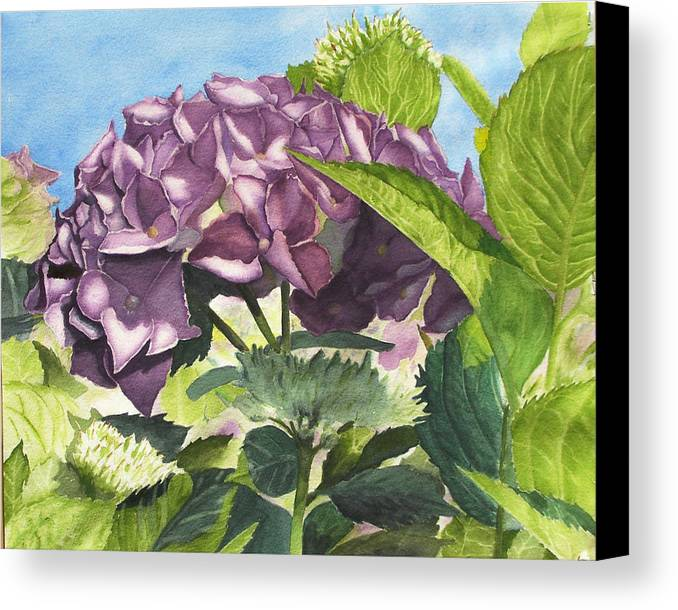 Floral Canvas Print featuring the painting Vanessa's Flower by Robert Thomaston