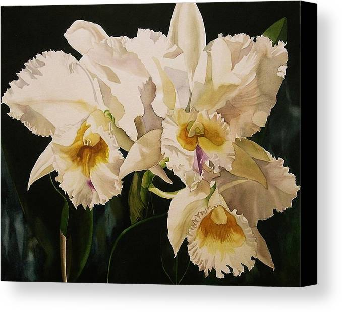 Orchid Canvas Print featuring the painting White Cattleya Orchids by Alfred Ng