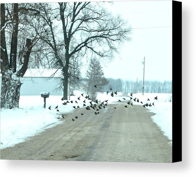 Indiana Winters Canvas Print featuring the photograph Disturbing The Flock by Julie Dant
