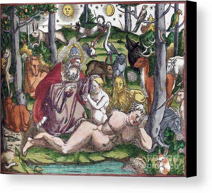 Science Canvas Print featuring the photograph Garden Of Eden Historiae Animalium by Science Source