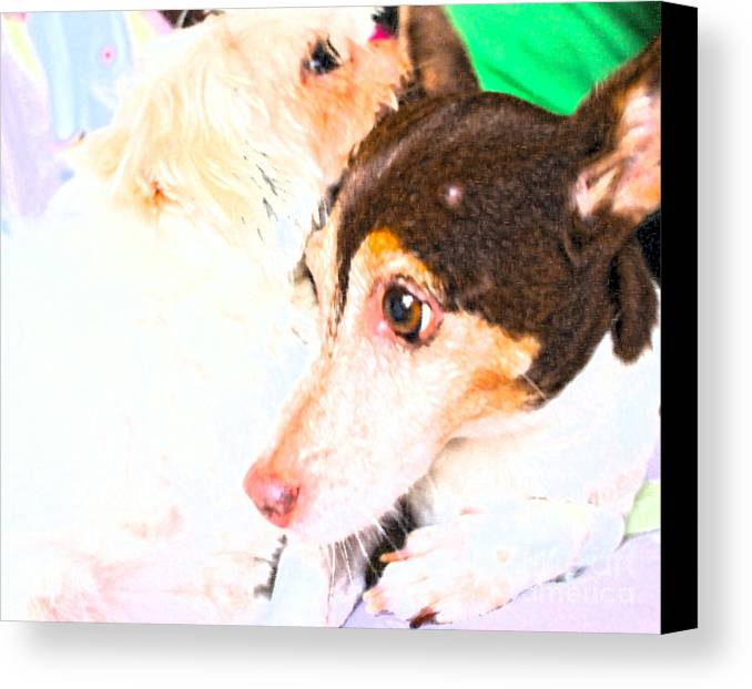 Friends Forever Canvas Print featuring the photograph Friends Forever by Marie Loh
