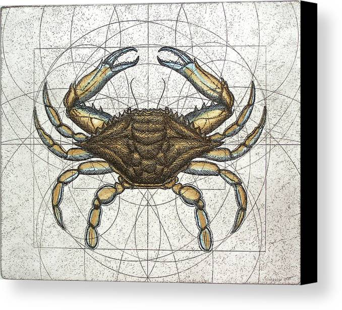 Maryland Canvas Print featuring the painting Blue Crab by Charles Harden