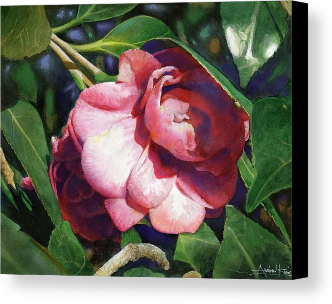Flowers Canvas Print featuring the painting Camellianne by Andrew King