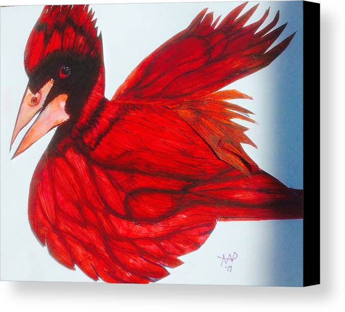 Red And Black Cardinal With Wing Out Canvas Print featuring the painting Crazy Cardinal by Mary Ann Perkins