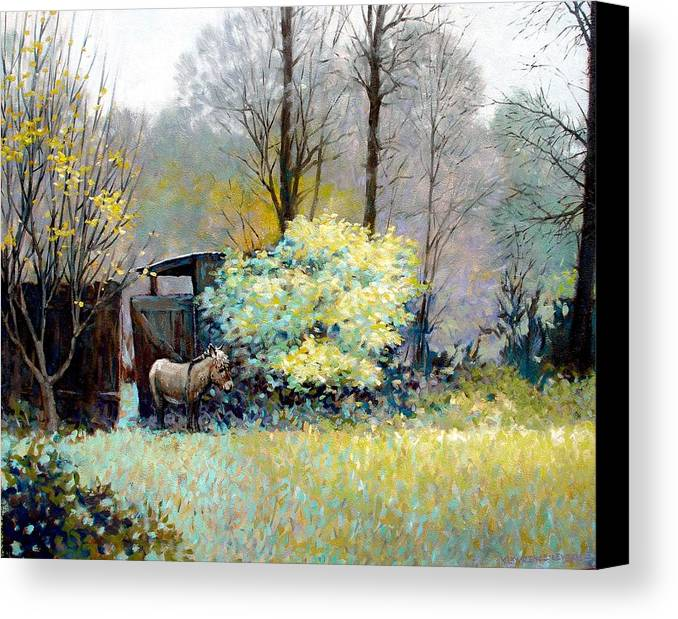 Donkey Canvas Print featuring the painting Katrina by Kevin Lawrence Leveque