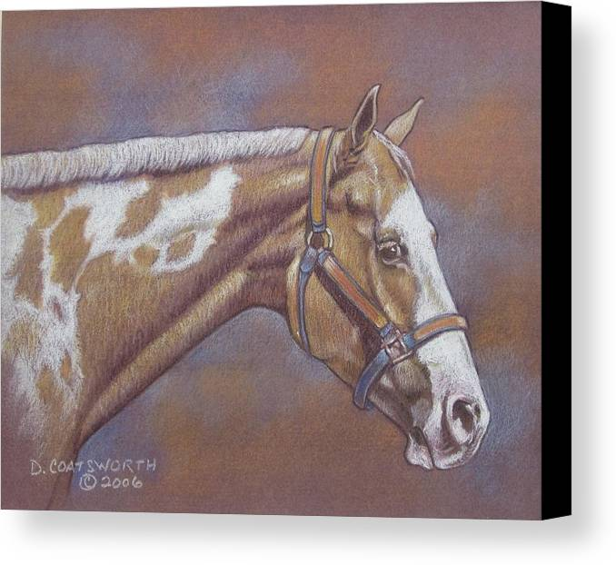 Canvas Print featuring the painting Paint Horse by Dorothy Coatsworth