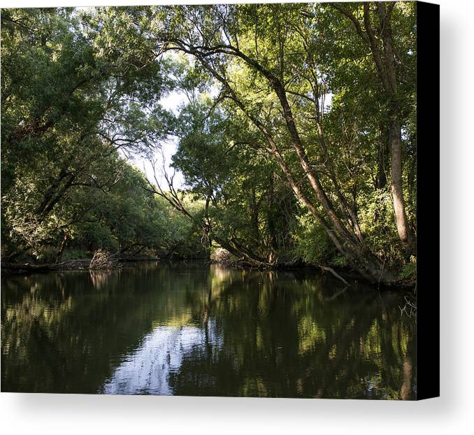 Landscape Canvas Print featuring the photograph River In The Jungle. by Radoslav Nedelchev