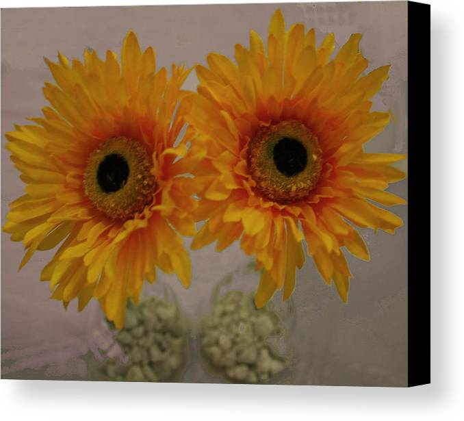 Photography Canvas Print featuring the photograph These Eyes by Bill Ades