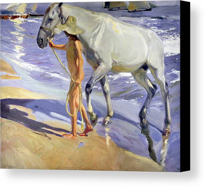 Washing The Horse Canvas Print featuring the painting Washing The Horse by Joaquin Sorolla y Bastida