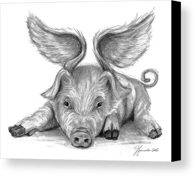 Pigs Canvas Print featuring the drawing When Pigs Fly by J Ferwerda