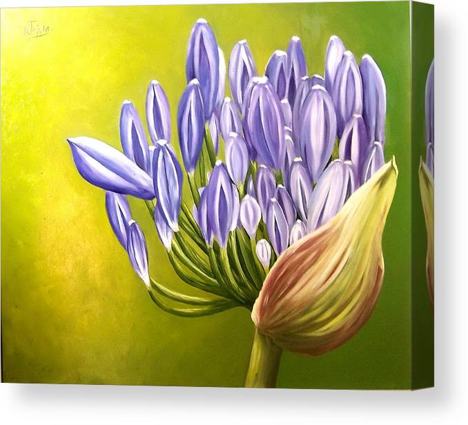 Flower Canvas Print featuring the painting Agapanthos by Natalia Tejera