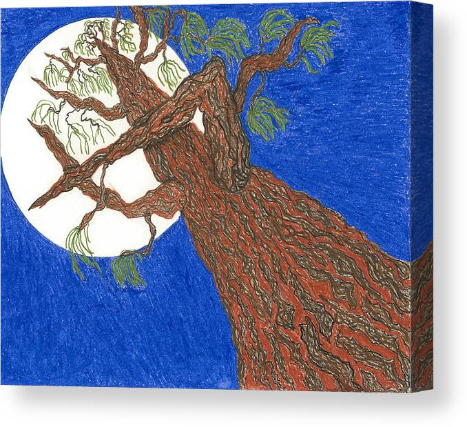 Tree Canvas Print featuring the pastel Redwood Tree by Rachel Zuniga