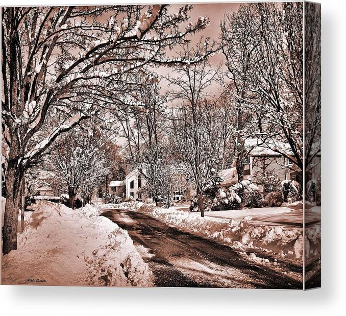 Landscape Canvas Print featuring the digital art Winter Beauty by Mikki Cucuzzo