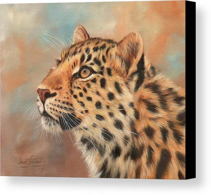 Leopard Canvas Print featuring the painting Amur Leopard by David Stribbling