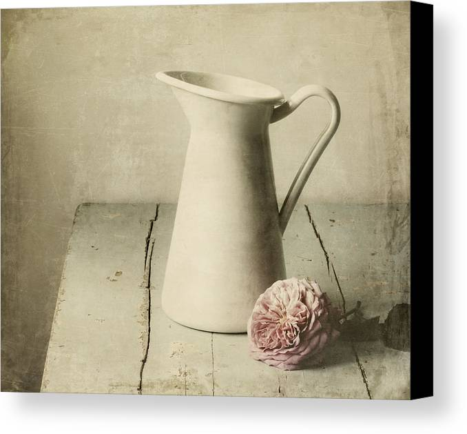 Pitcher Canvas Print featuring the photograph Femininity by Amy Weiss