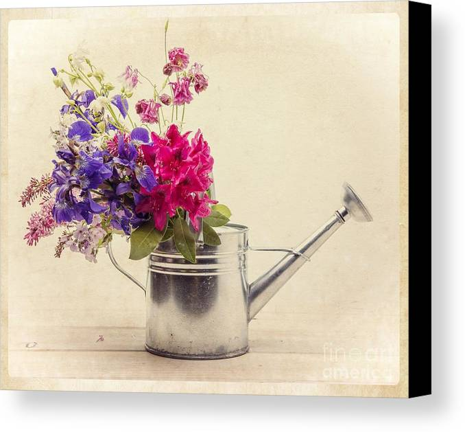 Can Canvas Print featuring the photograph Flowers In Watering Can by Edward Fielding