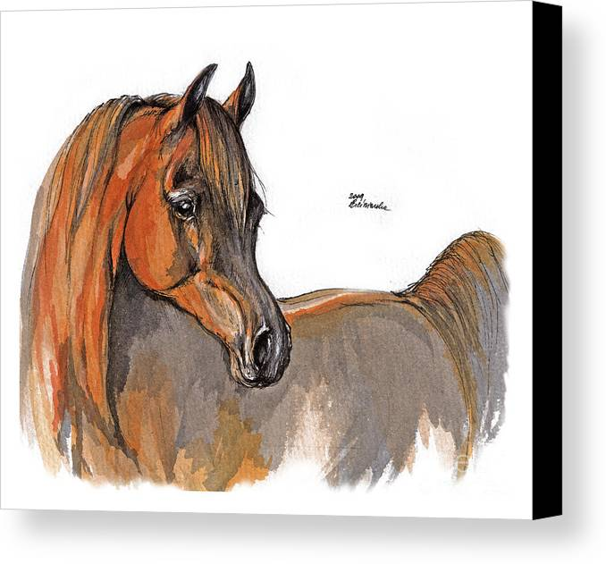Chestnut Horse Canvas Print featuring the painting The Chestnut Arabian Horse 2a by Angel Tarantella