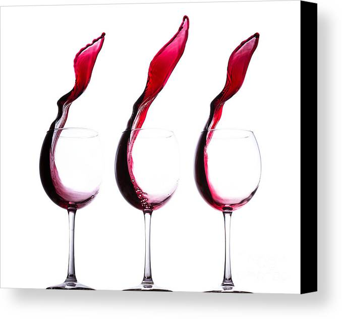 The Physics Of Wine Canvas Print featuring the photograph The Physics Of Wine by Jordan Danko