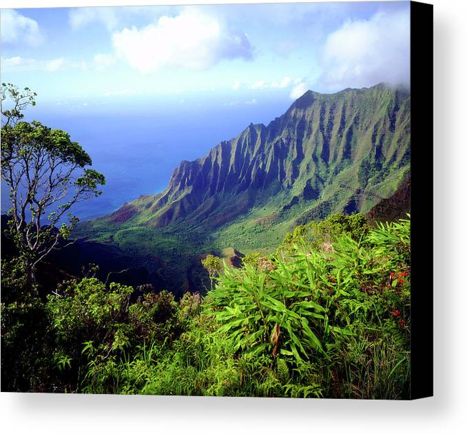 Blue Canvas Print featuring the photograph Usa, Kauai, Hawaii by Jaynes Gallery