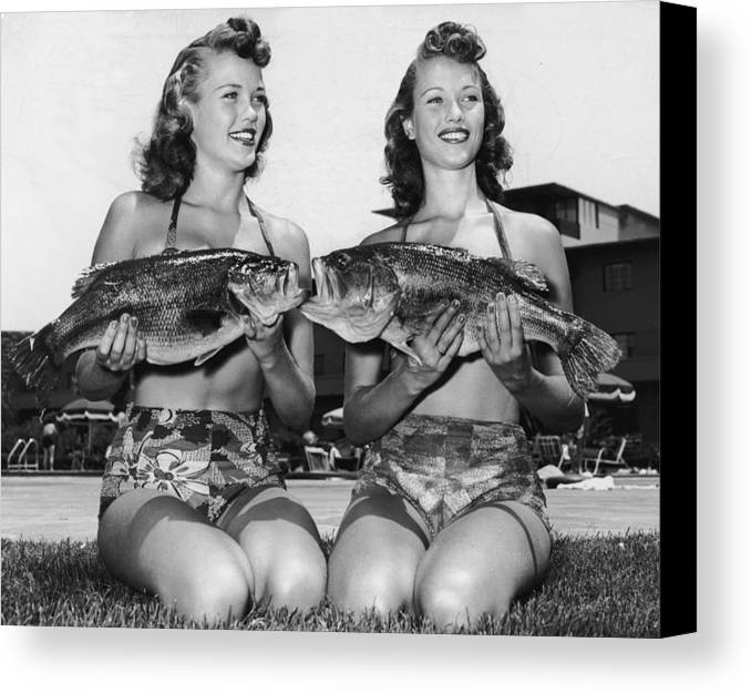 18-19 Years Canvas Print featuring the photograph Big Mouth Billy Bass by Archive Photos