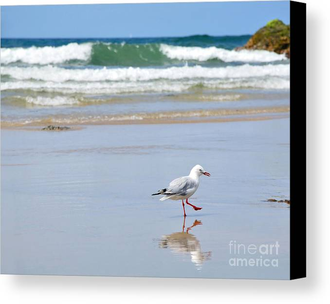 Photography Canvas Print featuring the photograph Dancing On The Beach by Kaye Menner