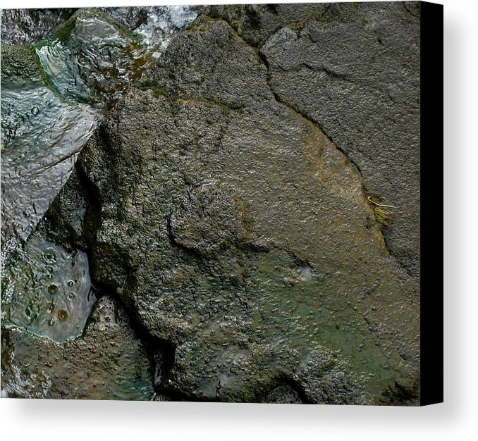 Stone Canvas Print featuring the photograph Water And Stone by Marilynne Bull