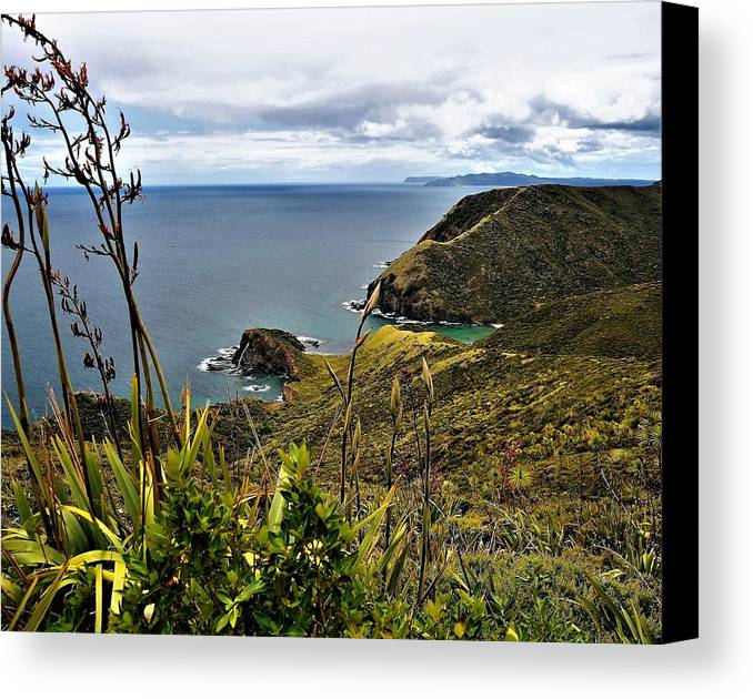 New Zealand Canvas Print featuring the photograph Cape Reinga North Island New Zealand by Heidi Fickinger