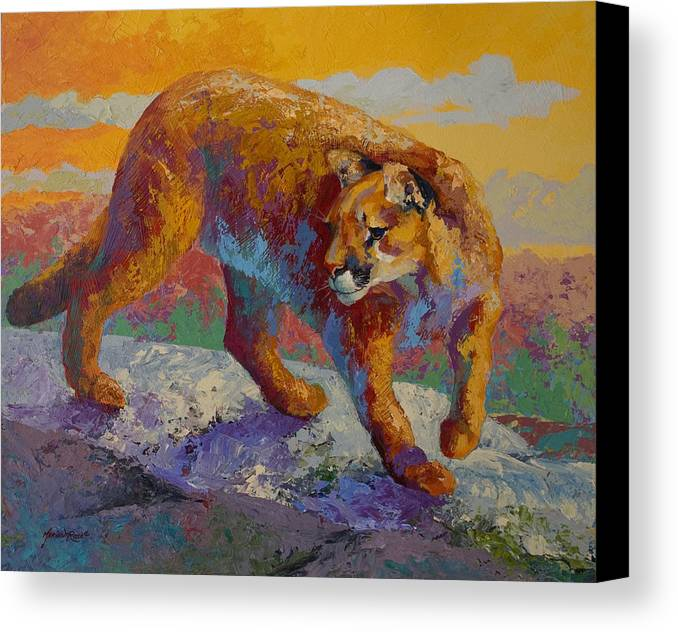 Mountain Lion Canvas Print featuring the painting Down Off The Ridge - Cougar by Marion Rose
